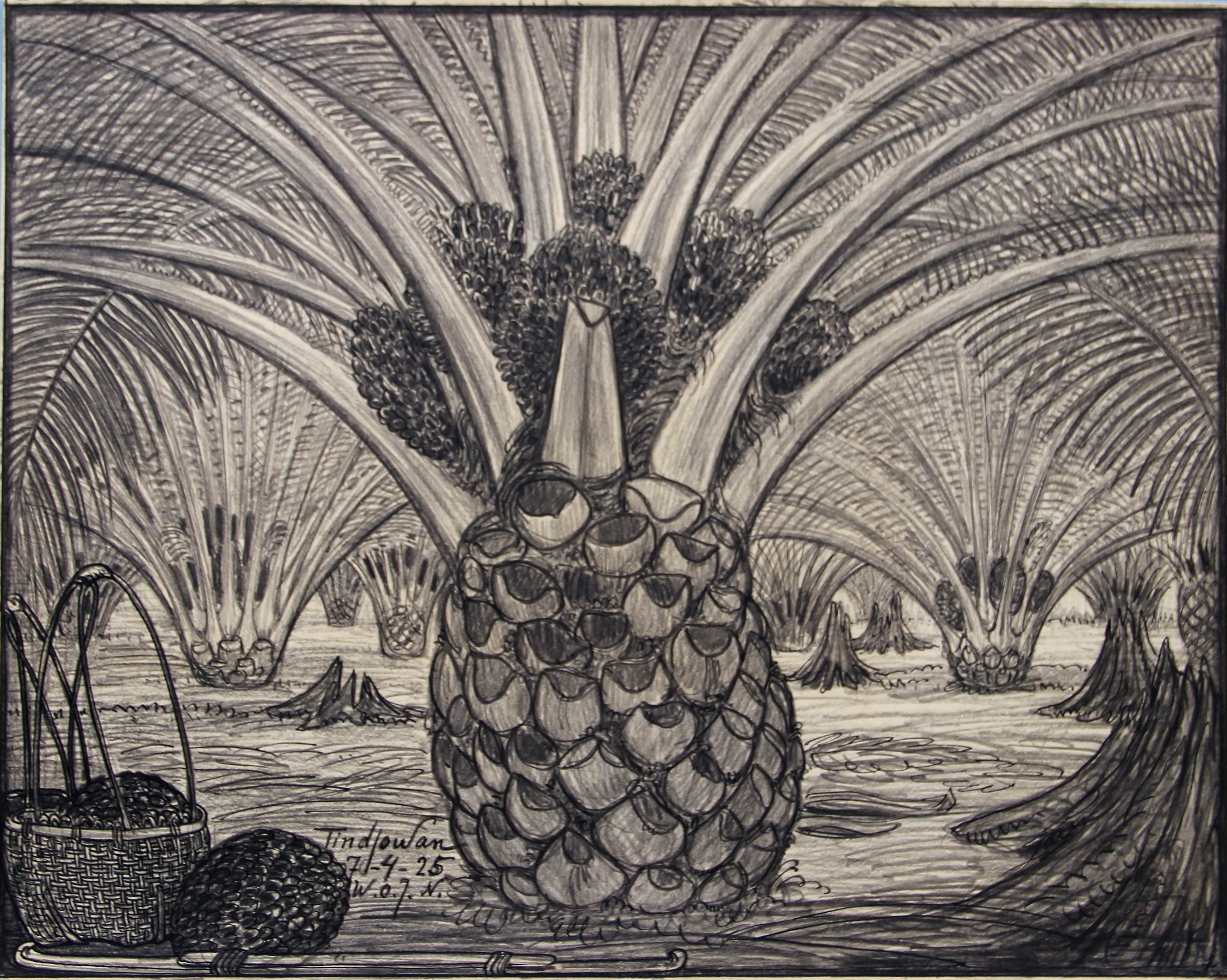 Palmplantage met oliepalmen bij Tindjowan 1925- W.O.J. Nieuwenkamp