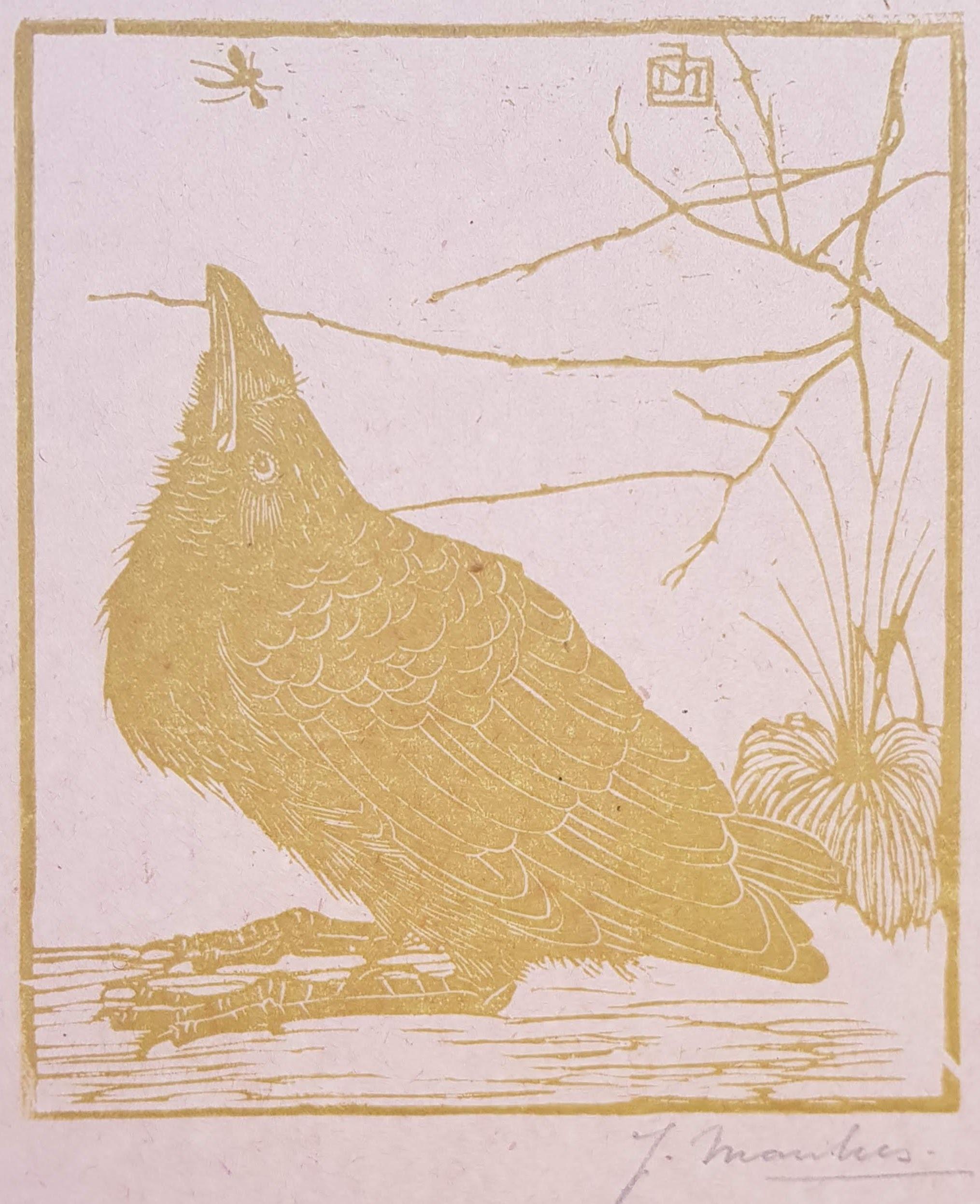 Kraai, omhoog kijkend naar een mugje- Jan Mankes