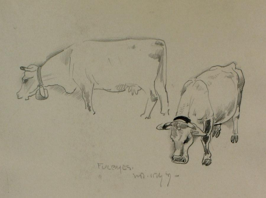 Twee koeien in Fulpmes- Willem van den Berg