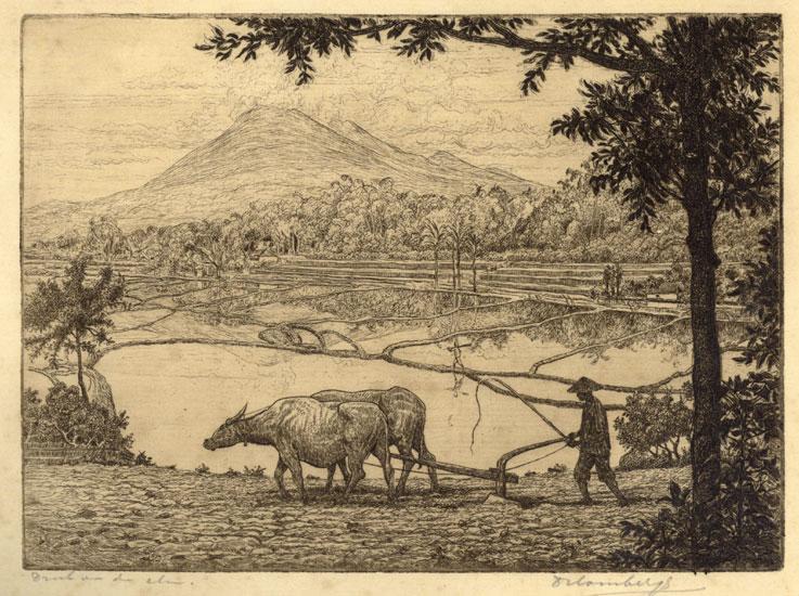 Ploegende boer in de Sawa- Dirk Homberg