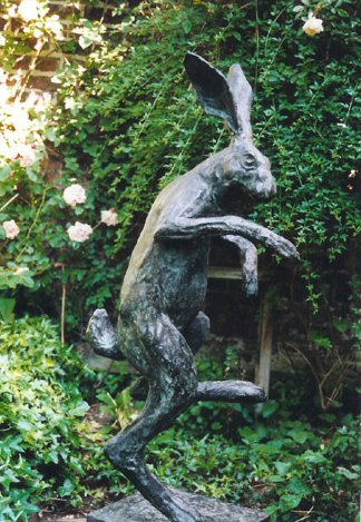 Dancing Hare- Pawel Kromholz
