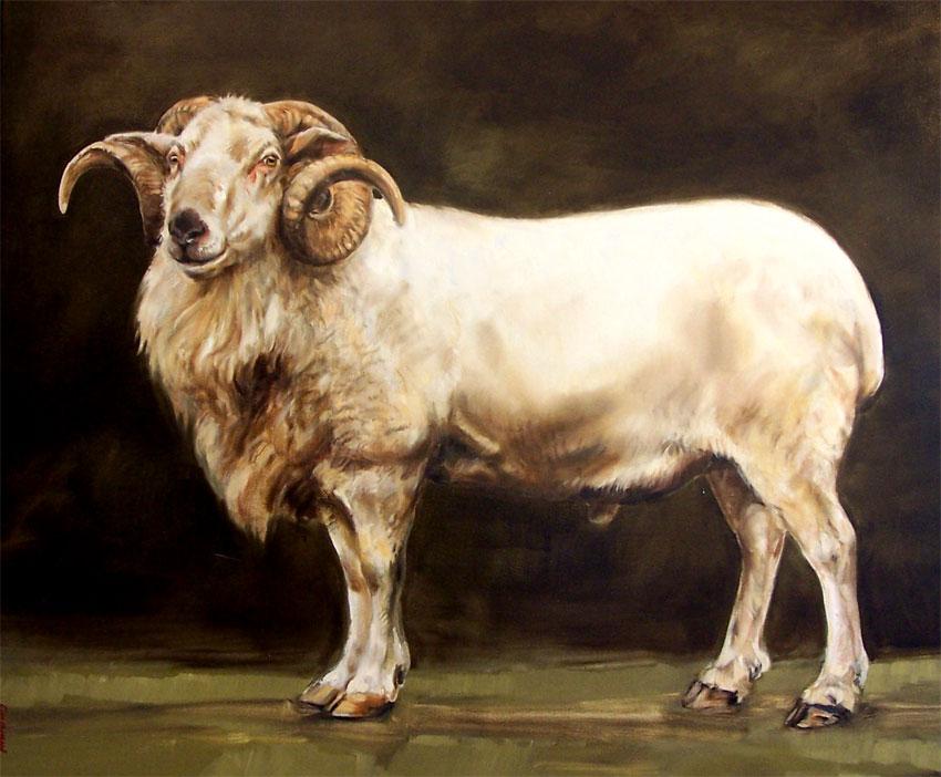 Standing Ram- Pawel Kromholz