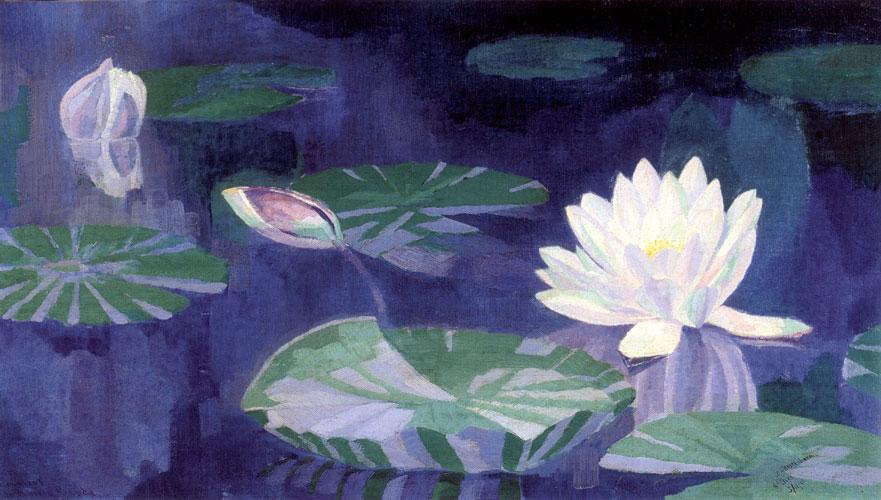 Witte Waterlelies- Dirk Smorenberg