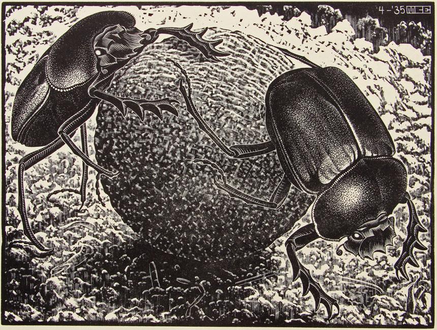 Scarabs- Maurits Cornelis Escher