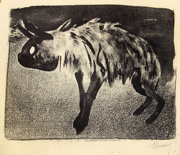 hyena- Kees Timmer