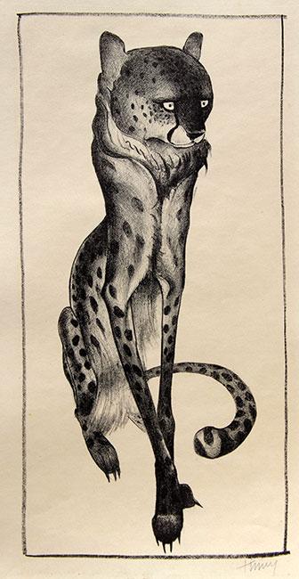 Jachtluipaard- Kees Timmer